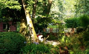 Piękny ogród - czego potrzebujesz?