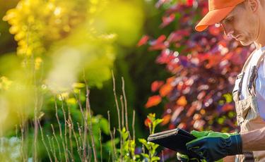 Kolory a samopoczucie w ogrodzie